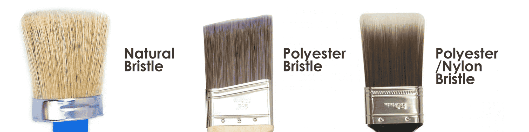 Different Brush Types: Natural Bristle, Polyester Bristle, Polyester/Nylon Bristle