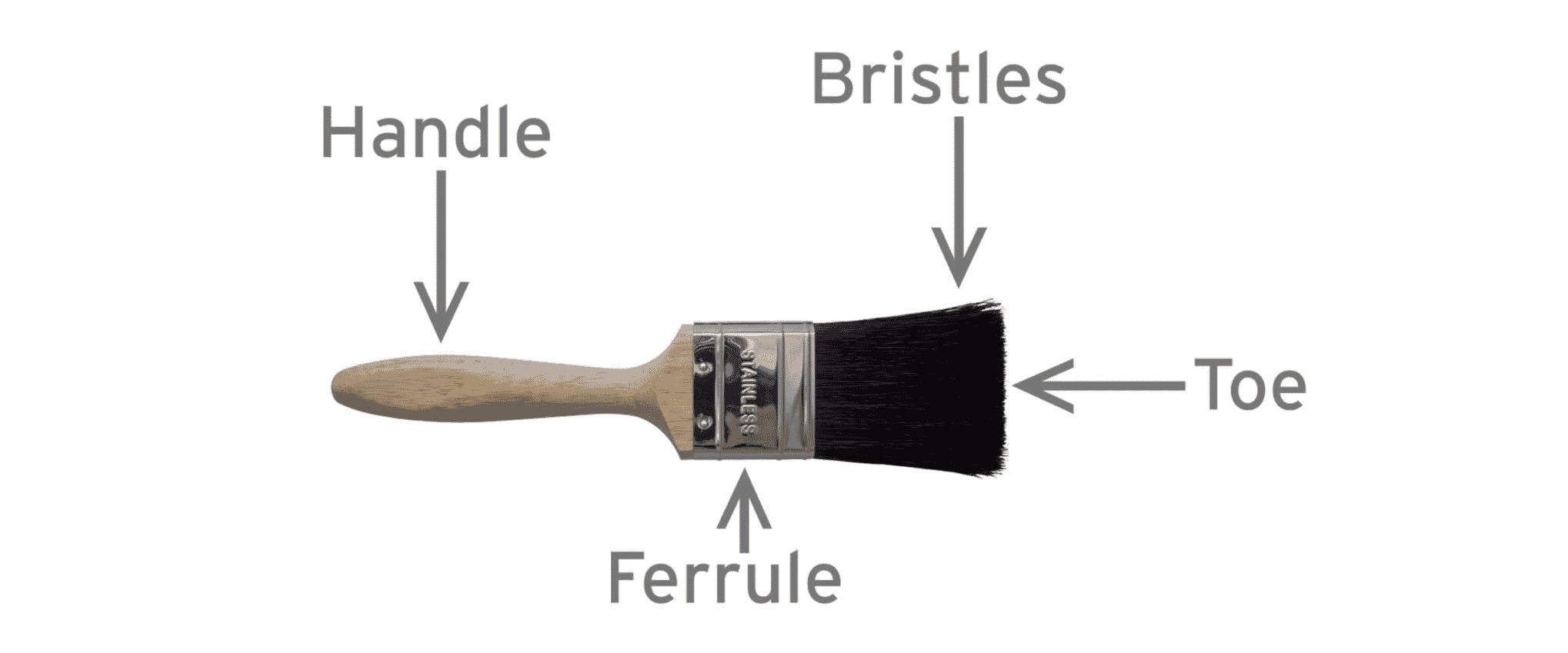 Anatomy of Paint Brush